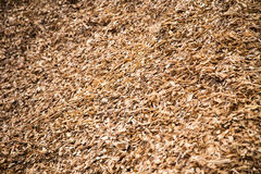 Hard wood mulch Royalty Free Stock Images