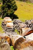 Hard Work. Dry Fireplace Wood Pile to Split. Pine wood pile for the fireplace, ready to split. Hard work. Vertical format Royalty Free Stock Photography
