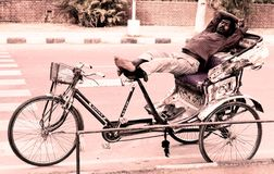 Hard worker slept in chandigarh india Royalty Free Stock Photos