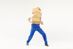 Hard-working builder with bunch of boxes Stock Image