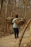 Hard working man Stock Photos