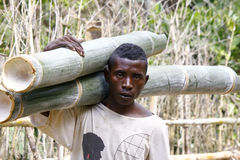 Hard working man carrying a tree trunk - MADAGASCAR Stock Image