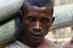 Hard working man carrying a tree trunk - MADAGASCAR Royalty Free Stock Photos