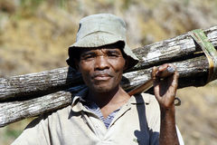 Hard working man carrying a tree trunk - MADAGASCAR Stock Images