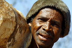Hard working man carrying a tree trunk - MADAGASCAR Royalty Free Stock Photo