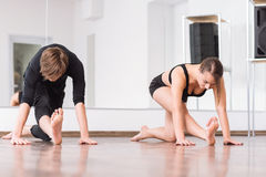 Hard working persistent dancers stretching out. Stretching activities. Nice pleasant hard working dancers bending their hands and looking at the floor while Royalty Free Stock Photo