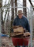 Hard working senior. Hauling a heavy load of wood in a red wheelbarrow royalty free stock photo
