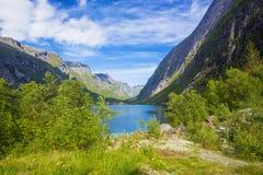 Hardanger海湾可以,挪威 免版税库存图片