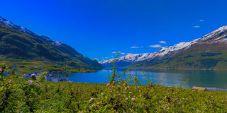 Hardangerfjord in Norway Royalty Free Stock Photo