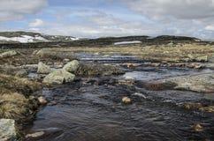Hardangervida Immagini Stock