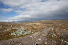 hardangervidda国家公园 库存图片