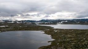 Hardangervidda山区 库存照片