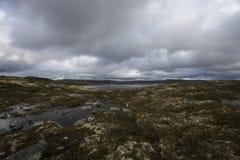 hardangervidda Νορβηγία Στοκ εικόνες με δικαίωμα ελεύθερης χρήσης