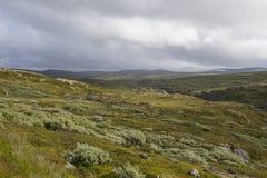hardangervidda Νορβηγία Στοκ φωτογραφία με δικαίωμα ελεύθερης χρήσης