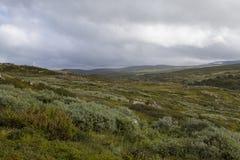 Hardangervidda, Norway. Hardangervidda the largest mountain plateau in Europe , Norway Royalty Free Stock Image