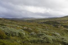 Hardangervidda plateau Royalty Free Stock Photography