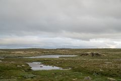 The Hardangervidda Mountain Area Royalty Free Stock Photography