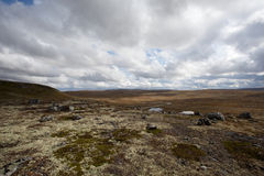 Hardangervidda National Park Royalty Free Stock Images