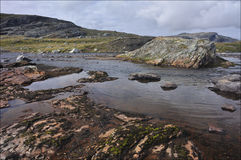 Hardangervidda, Norvegia Fotografia Stock