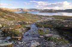 Hardangervidda, Norvegia Fotografie Stock Libere da Diritti