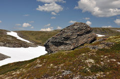 Hardangervidda, Norvegia Fotografia Stock Libera da Diritti