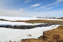 Hardangervidda, Norvegia Immagine Stock