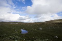 Hardangervidda, Norway. Hardangervidda the largest mountain plateau in Europe , Norway Royalty Free Stock Photography