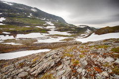 Hardangervidda Norway Stock Photo