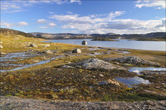 Hardangervidda, Norwegen Stockfotos