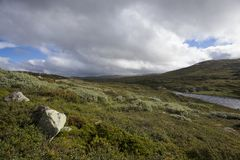 Hardangervidda platå Fotografering för Bildbyråer