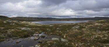 Hardangervidda platå Arkivbilder