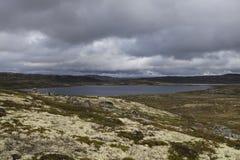 Hardangervidda platå Arkivbild