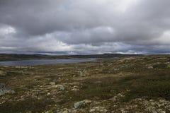 Hardangervidda platå Royaltyfria Bilder