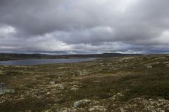 Hardangervidda plateau Royalty Free Stock Images