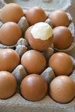 Hardboiled egg partly shelled. On a series of raw eggs Stock Photography
