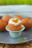 Harde gekookte eieren Royalty-vrije Stock Foto