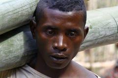 Harde werkende mens die een boomboomstam dragen - MADAGASCAR Royalty-vrije Stock Foto's