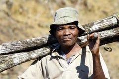 Harde werkende mens die een boomboomstam dragen - MADAGASCAR Stock Foto's