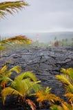 Hardened lava rock Royalty Free Stock Photo
