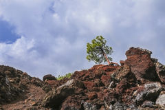 Hardened lava of the volcano on the background of blue sky. Stock Photography
