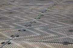 Hardstanding nad trawą z zygzakowatym projektem - wizerunek obrazy royalty free