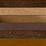 Hardwood Royalty Free Stock Photo