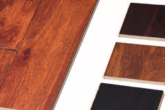 Hardwood. Floor samples attached to a white board Stock Images