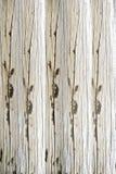 hardwood στοκ φωτογραφίες με δικαίωμα ελεύθερης χρήσης