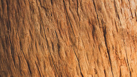 Hardwood brown color background. Royalty Free Stock Photo