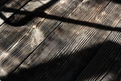Hardwood floor with shadows. Horizontal photo Stock Photo