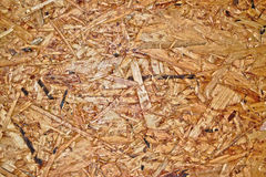Hardwood Texture. Closeup of a hardwood wall for background/texture Royalty Free Stock Image