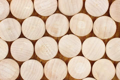 Hardwood wood plugs Stock Photos