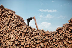 Hardworking Business Man solving problem. Hardworking Business Man on top of large pile of logs solving problem Royalty Free Stock Photos