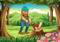 A hardworking lumberjack chopping woods at forest. Illustration of a hardworking lumberjack chopping woods at the forest Royalty Free Stock Images